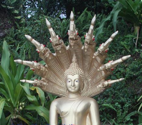 HsinTao: Dragon King, the Guardian of Dharma