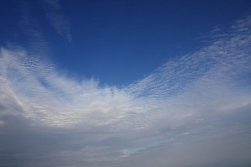 第二天的午後天空大蓮花IMG_2710